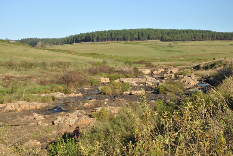 Blyde river- lisbon falls (4)