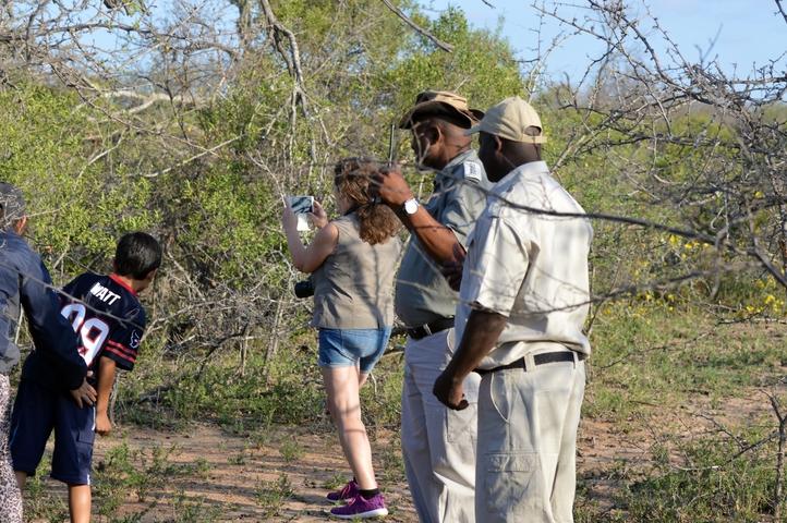 guepard Karongwe (7)