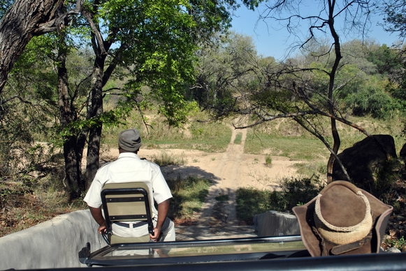 Karongwe piste descente