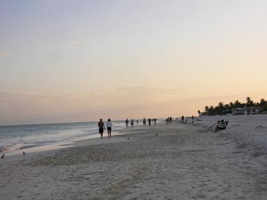 playa del carmen (16)