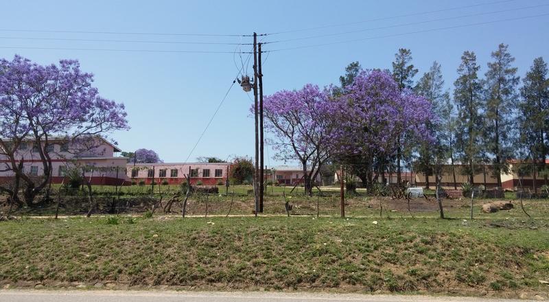 swaziland paysage