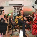 Grenade flamenco au chien andalou