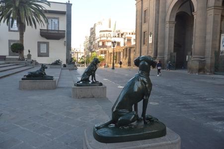 Las Palmas de Gran Canaria les chiens