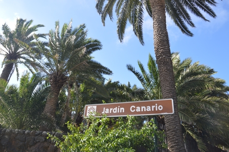 jardin botanique Gran Canaria