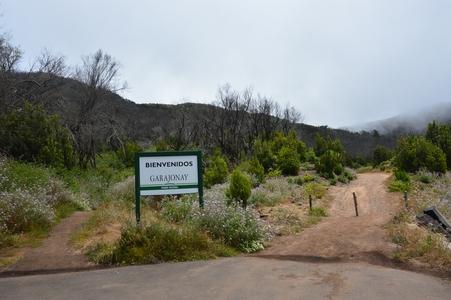 parque national Garajonay