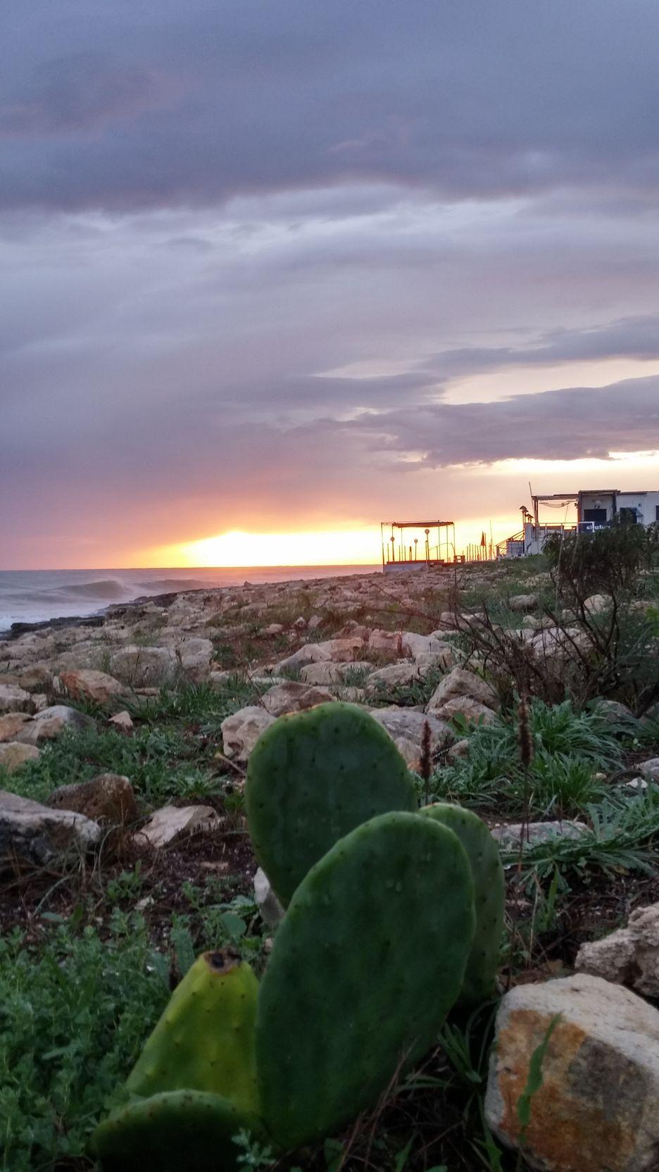 marina-di-monica coucher de soleil