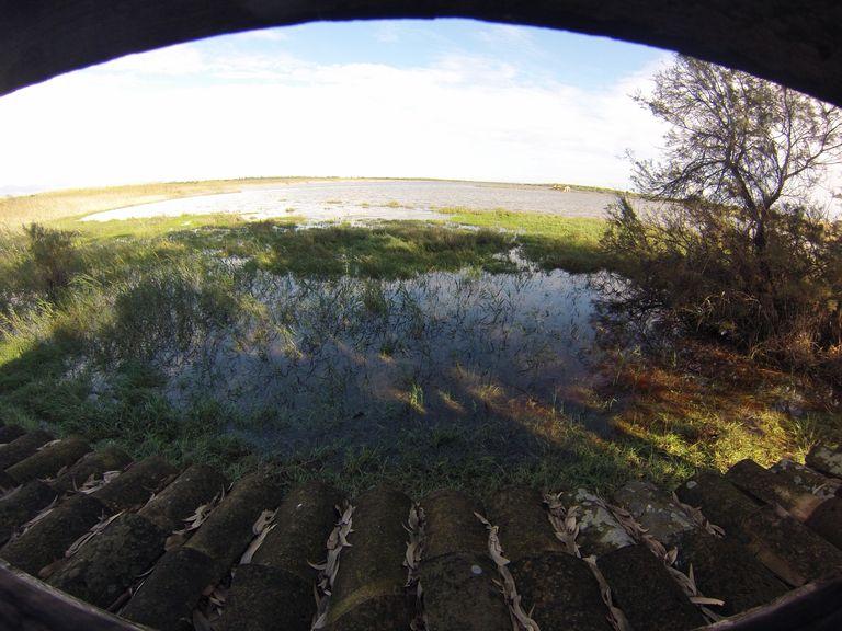 reserve cabane observation
