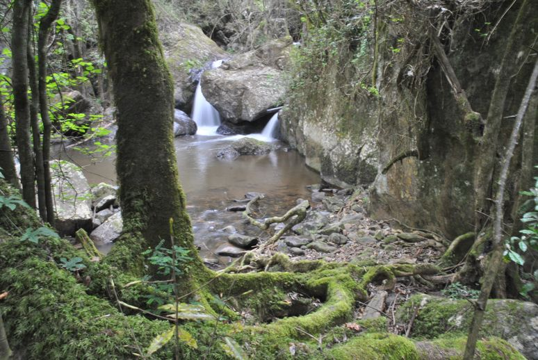 Blyde river-horse shoe falls (1)