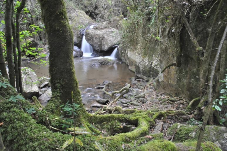 Blyde river-horse shoe petite cascade