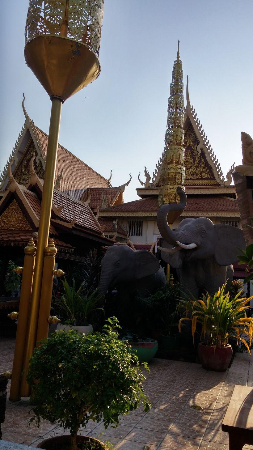 phnom penh palais royal elephant