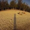 ermitage plage