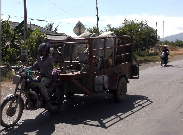 K-K-tuktuk-3-3