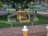 valladolid Parque Francisco Canton Rosado