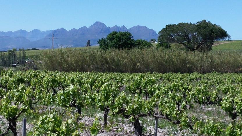 10 octobre route des vins (6)