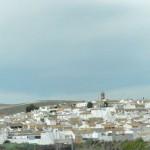village dans les oliviers