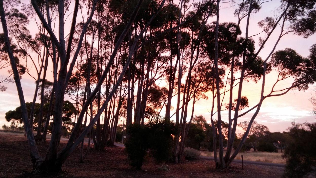 Truro dans la valle -coucher de soleil