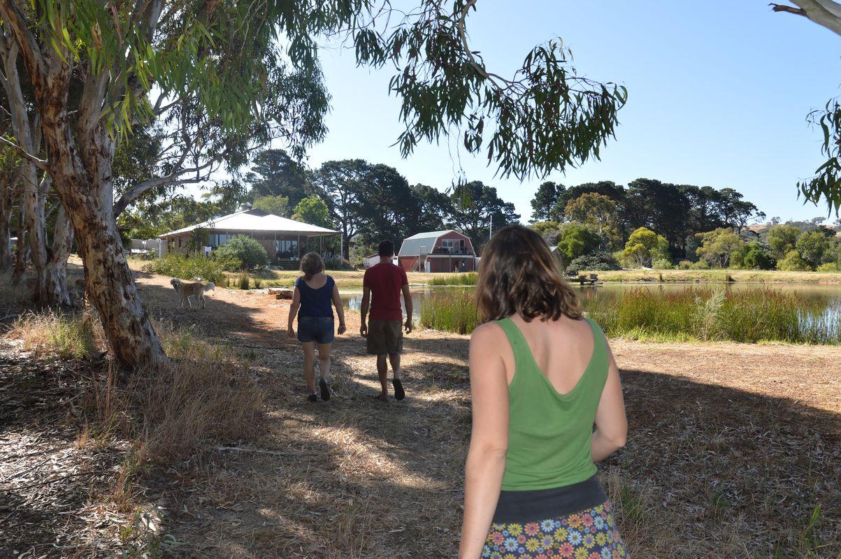 chez steve- dans le parc